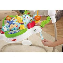 """Прыгунки """"Zoo Party"""" (Fisher-Price)"""